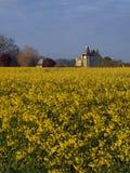 Castello da un giacimento del seme di ravizzone, Usseau di Motte Fotografie Stock Libere da Diritti