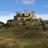 Castello del del Rio di Almodovar Fotografia Stock