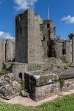 Castello del raglan Fotografia Stock Libera da Diritti
