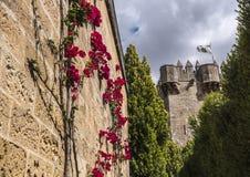 Castello del Rio, di Almodovar è un coraggio dell'origine musulmana, Fotografie Stock Libere da Diritti