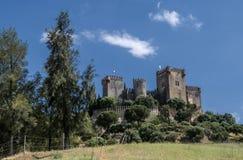 Castello del Rio, di Almodovar è un coraggio dell'origine musulmana, Fotografia Stock