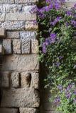 Castello del Rio di Almodovar, dettaglio della parete di pietra e bello Fotografia Stock