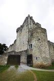 Castello del Ross in Irlanda Fotografie Stock