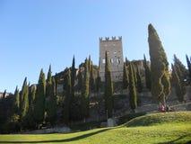 Castello dell'arco di trento in negativo per la stampa di cartamoneta Adige di trentino Fotografia Stock Libera da Diritti