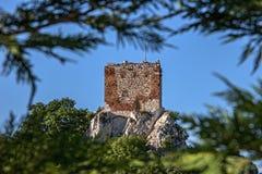 Castello della capra sulla collina superiore in Mikulov Fotografie Stock Libere da Diritti