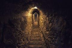 Castello della crusca, Romania immagini stock libere da diritti