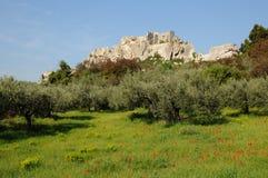 Castello della Les-Baux-de-Provenza Fotografie Stock Libere da Diritti