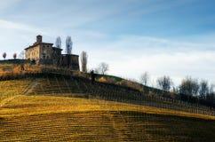 Castello della Volta and vineyards Barolo, Italy. Castello della Volta, medieval castle in the vineyards of Langhe, near Barolo Piedmont, Italy stock photography