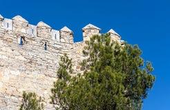 Castello di Almansa Fotografia Stock