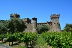 Castello di Amorosa Vineyard,北Calif 免版税库存图片