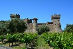 Castello di Amorosa Vinhedo, Calif do norte Imagens de Stock Royalty Free