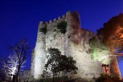 Castello di Anadolu Immagini Stock