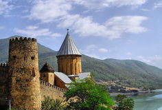 Castello di Ananuri Immagini Stock Libere da Diritti