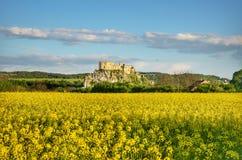 Castello di Beckov Fotografia Stock Libera da Diritti
