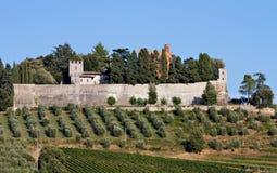 Castello di Brolio Stock Image