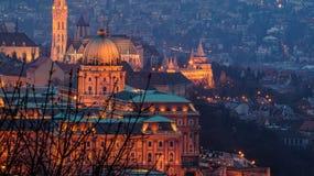 Castello di Buda Fotografie Stock Libere da Diritti