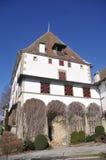 Castello di Burgistein Fotografia Stock