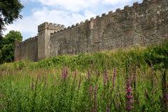 Castello di Cardiff Immagine Stock