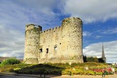 Castello di Carlow Fotografia Stock