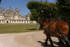 Castello di Chambord Fotografie Stock Libere da Diritti