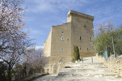 Castello di Chateauneuf du Pape Immagini Stock Libere da Diritti