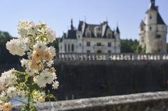 Castello di Chenonceau in Francia europa fotografie stock libere da diritti