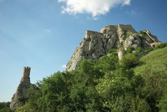 Castello di Devin su una collina Immagini Stock Libere da Diritti