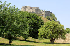 Castello di Devin vicino a Bratislava. La Slovacchia Fotografia Stock