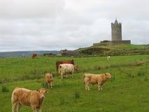 Castello di Doonagore immagine stock