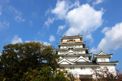 Castello di Fukuyama (lato sud) Fotografia Stock Libera da Diritti