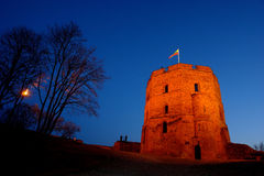 Castello di Gediminas a Vilnius fotografia stock