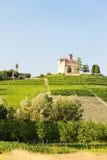 Castello di Grinzane Cavour fotografia stock libera da diritti