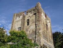 Castello di Guildford Fotografia Stock Libera da Diritti