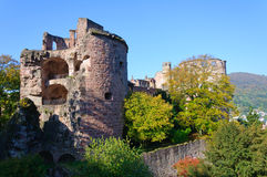 Castello di Heidelberg in Germania Immagine Stock