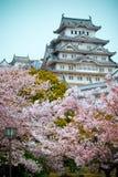 Castello di Himeji fotografia stock libera da diritti