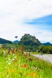 Castello di Hochosterwitz in Austria fra i fiori del papavero Fotografie Stock Libere da Diritti