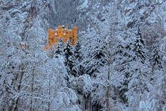 Castello di Hohenschwangau nell'inverno più forrest Immagini Stock Libere da Diritti