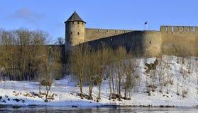 Castello di Ivangorod nell'inverno Fotografia Stock Libera da Diritti