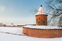 Castello di Kaunas Immagini Stock Libere da Diritti