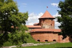 Castello di Kaunas Immagini Stock
