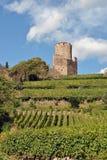 Castello di Kaysersberg Immagine Stock