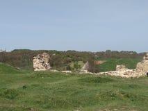 Castello di Khotyn Fotografie Stock