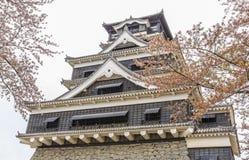 Castello 1 di Kumamoto Fotografie Stock Libere da Diritti