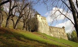 Castello di Lubovna della stella Fotografie Stock Libere da Diritti