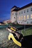 Castello di Lupca Immagini Stock