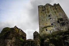 Castello di lusinga Immagine Stock