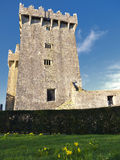 Castello di lusinga Immagini Stock Libere da Diritti