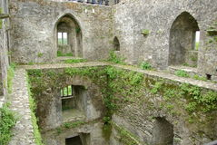 Castello di lusinga, Irlanda Fotografia Stock