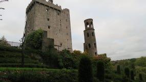 Castello di lusinga vicino a sughero, Irlanda fotografia stock libera da diritti