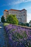Castello di Mikulov Fotografie Stock